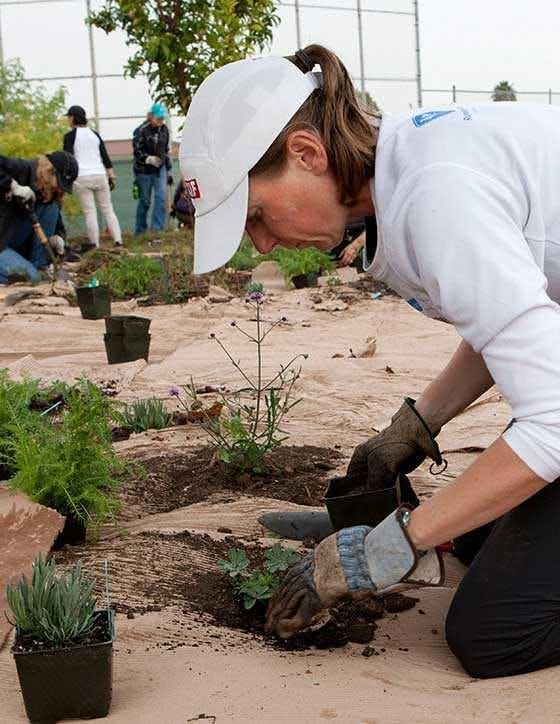 CLIF CORPS volunteer planting