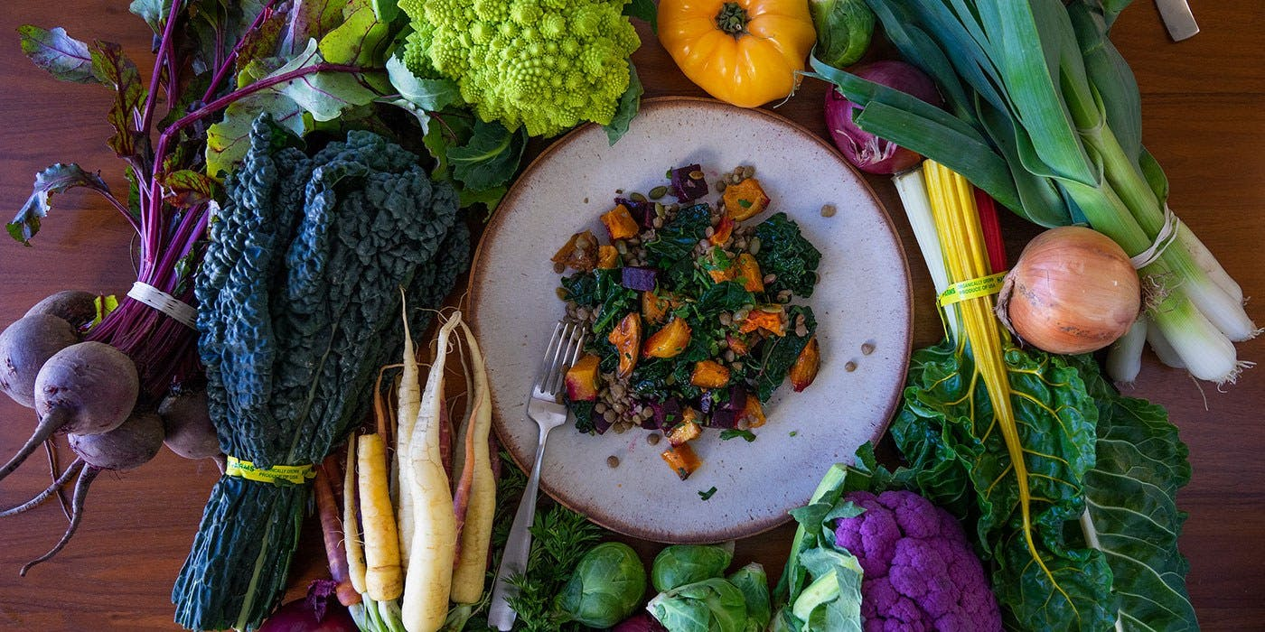 Plate of vegetables and grains